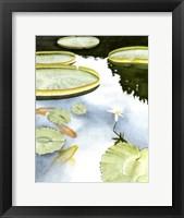 Framed Koi Reflection I