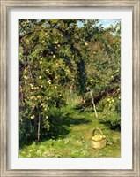 Framed Dubavik's Garden