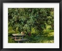 Framed Under the Apple Tree