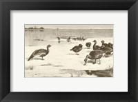 Framed Geese