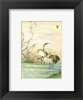 Framed Oriental Cranes II