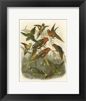 Framed Red Cassel Birds I