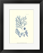 Shades of Aqua IV Framed Print