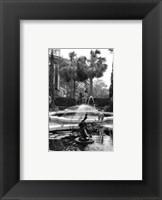 Framed Garden Fountain II