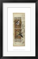 Framed Bird Pair from India I