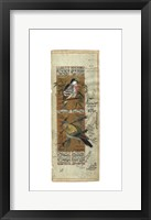 Framed Bird Pair from India I