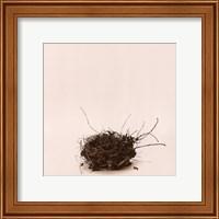 Framed Leebas Nest
