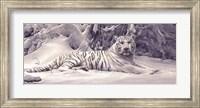 Framed White Tiger
