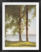 Framed Sunlit Trees II