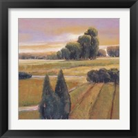 Framed Summer Cypress