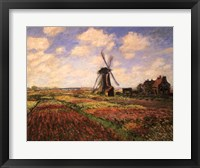 Framed Tulip Fields with Windmill