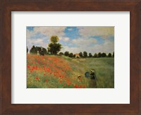 Framed Wild Poppies