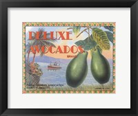 Framed Deluxe Avacados