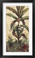 Framed Exotic Palms II
