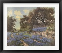 Framed Blue Bonnet Trail