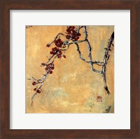Framed Chinese Blossoms II