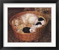 Framed Sleeping Dogs