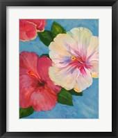 Framed Hibiscus Fantasia