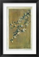 Framed Plum Blossoms II