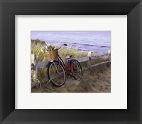 Framed Beach Petals