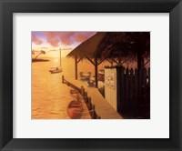 Framed Palm Cove