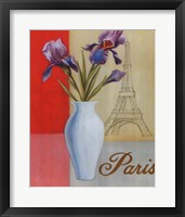 Framed Paris Floral Views