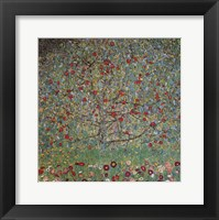Framed Apple Tree