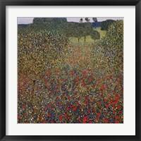 Framed Field of Poppies, c.1907