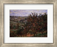 Framed Apple Trees