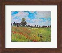 Framed Corn Poppies
