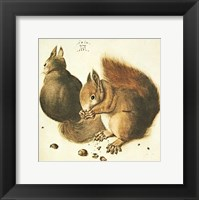 Framed Squirrels