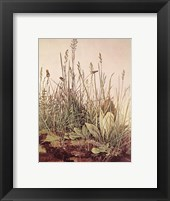 Framed Tall Grass