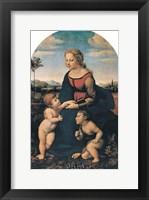 Framed Madonna (La Belle Jardiniere)