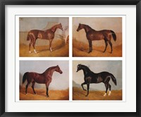 Framed Stable Mates (Set of Four)