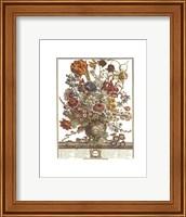 Framed March/Twelve Months of Flowers, 1730
