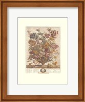 Framed April/Twelve Months of Flowers, 1730