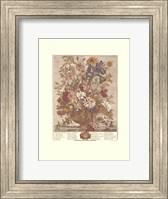 Framed June/Twelve Months of Flowers, 1730