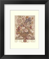 Framed June/Twelve Months of Flowers, 1730