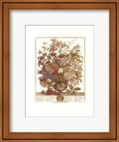 Framed July/Twelve Months of Flowers, 1730