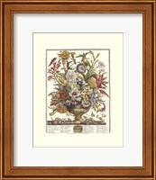Framed September/Twelve Months of Flowers, 1730