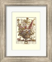 Framed December/Twelve Months of Flowers, 1730