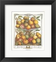Framed February/Twelve Months of Fruits, 1732