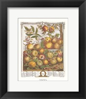 Framed May/Twelve Months of Fruits, 1732