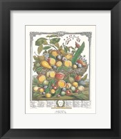 Framed July/Twelve Months of Fruits, 1732