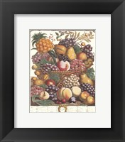 Framed October/Twelve Months of Fruits, 1732