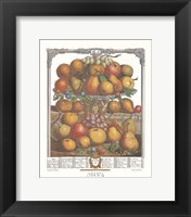 Framed December/Twelve Months of Fruits, 1732