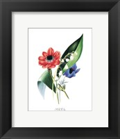 Framed Flowers (Untitled) Anemone