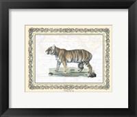 Tiger - patterned frame Framed Print