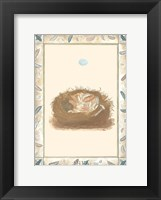 Framed Woodland Nest I