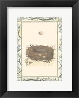 Framed Woodland Nest II